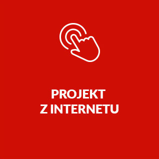 internet-project-btn